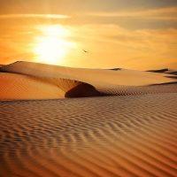 Leo New Moon: Sun Meditation